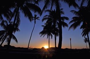 Lummus Park South Beach